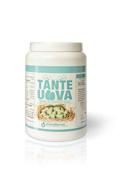 CHF - TANTE UOVA 1 kg