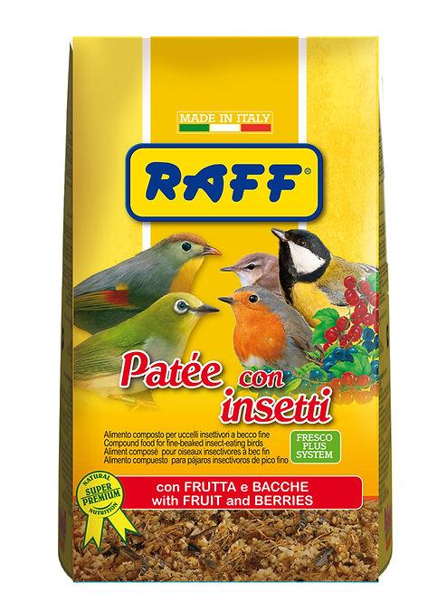 Raff - Patee con Insetti 400gr