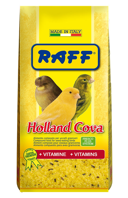 Raff - Holland Cova 300gr