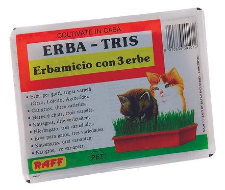 Raff - Erba tris