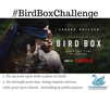 Are Your Kids Doing The Bird Box Challenge?