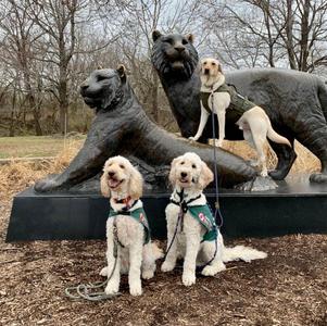 Trip to the Tulsa Zoo