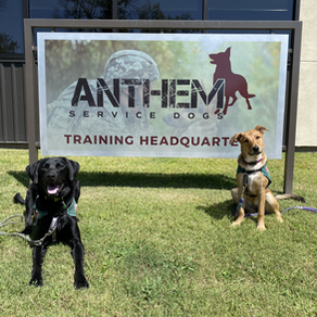Two New Recruits!
