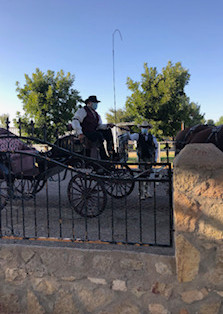 Horse & Carriage at The Ranch On Vinton Rd.jpg