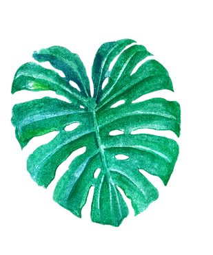 leaves-15.PNG