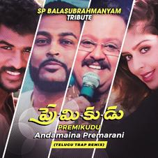Premikudu - Andamaina Premarani (Dj Naveen Kumar Remix) (SP Balasubrahmanyam Tribute)