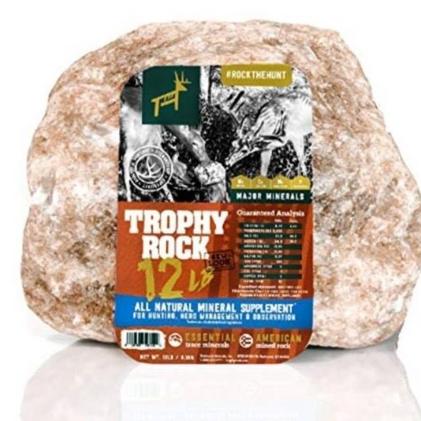 Trophy Rock!