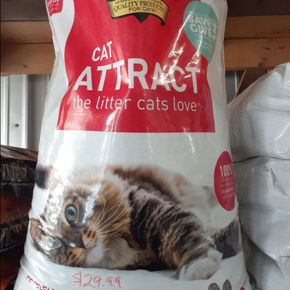 Does Your Cat Have  a Problem with It's Litter Box?