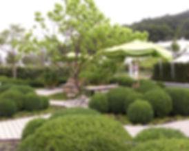 Gartengestaltug