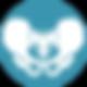 Pelvis Icon_2020 Platform (1).png
