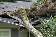 ES Inspections-damaged-roof