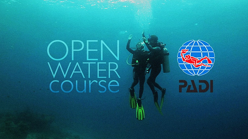 Open Water Diver Course