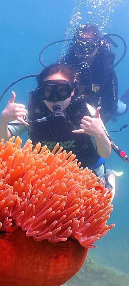 沙巴體驗潛水海底攝影,中文潛水教練,度數面鏡