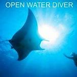 open water潛水