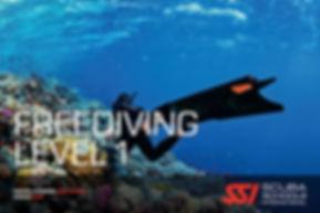 SSI_FD1_Cover.jpg