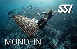 SP_MONO.jpg