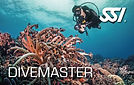 likescuba_Divemaster (SSI).jpg