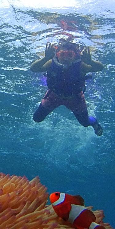 環攤島珊瑚浮潛多魚水清