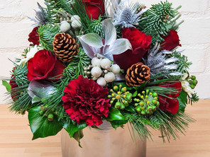 Christmas Flower Collection