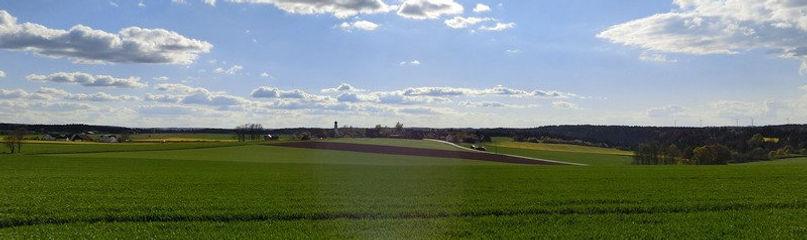 field3.jpg