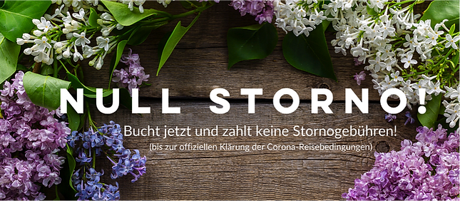 Null Storno.png