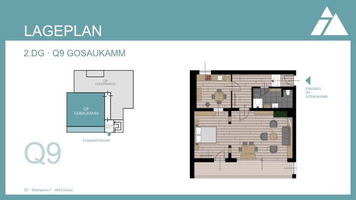 Lageplan Q9 Gosaukamm.jpg