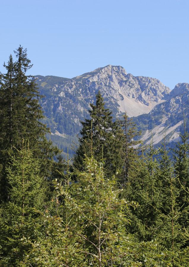Berge,Sommer.JPG