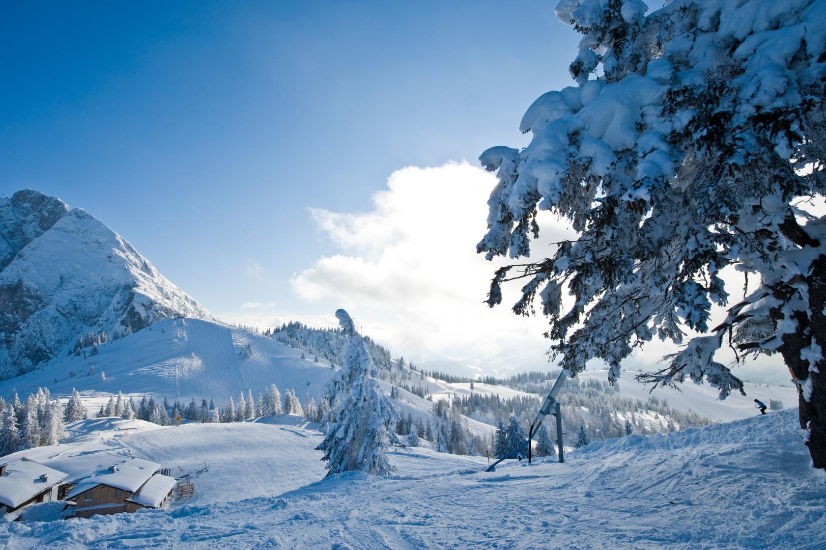 Gosau-Winter-2013-Foto-OOE-Tourismus (3)
