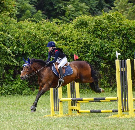 Fair Hill International Horse Trials
