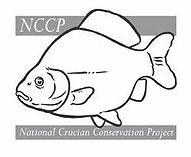 NCCP.jpg