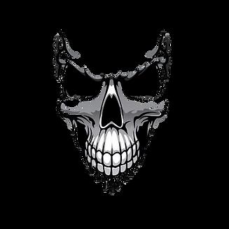 SSP2 Skull only.png