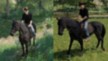 FS19-Cowboy-Hat-v1.0.0-4-360x203.jpg
