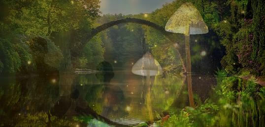 Magical Portal Image