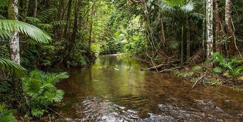 Meunga Creek