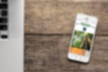 Web adaptada a dispositivos móviles