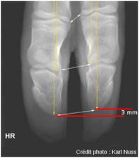 radiologie.png