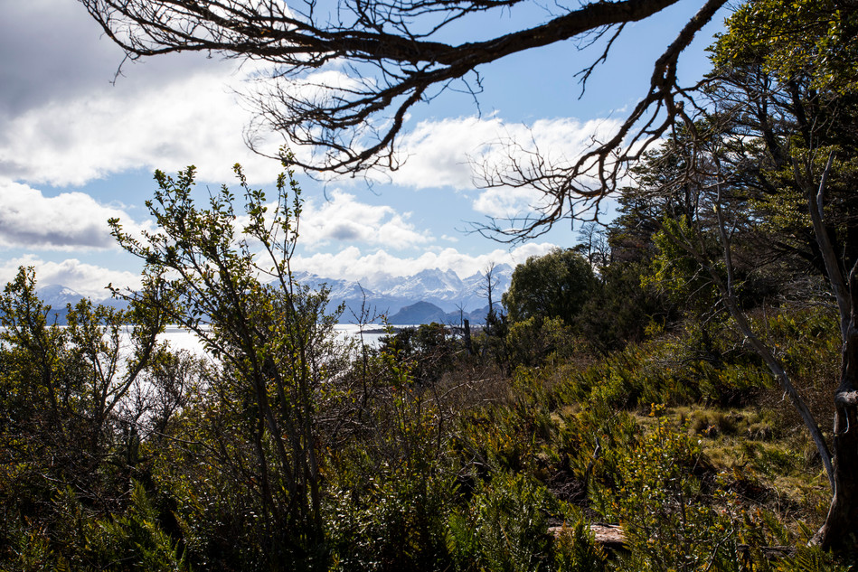 demo arquitectos casa pataba patagonia