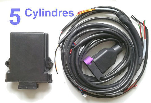 Kit 5 cylindres