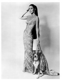 Cher and Italian Greyhound
