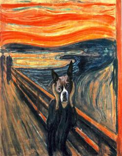 Boston Terrier The Scream