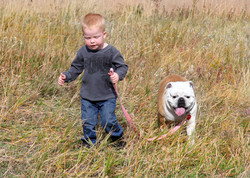 Bully and His Boy