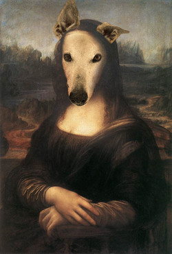 Greyhound Mona Lisa
