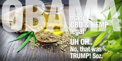 legalised-cbdTrumpSuccess.jpg