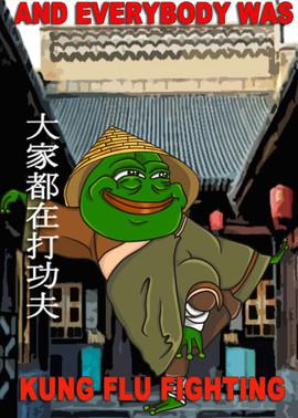 kung_flu_position.jpg