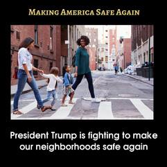 SafeAgain8-TrumpSuccess.jpg