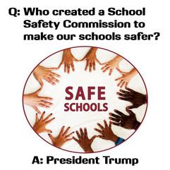 Q&A-SafeSchools2-TrumpSuccess.jpg
