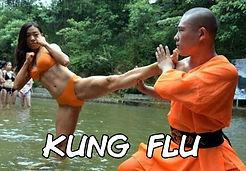 Kung Flu 30.jpg