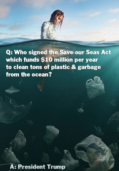 Q&A-TrumpSuccess-pollution-ocean-surfing