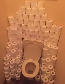 ToiletpaperPalace.jpg