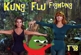 kung_flu_fighting_ginger_jme.jpg